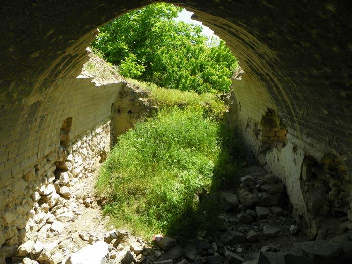 Dalmayi-Baxer-2
